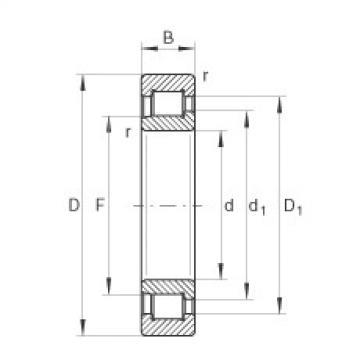 FAG Rolamento de rolos cilíndricos - SL192336-TB-BR